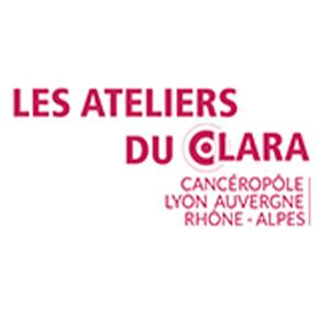 Rencontre régionale Cancer du foie @ École d'infirmières Rockefeller | Lyon | Auvergne-Rhône-Alpes | France